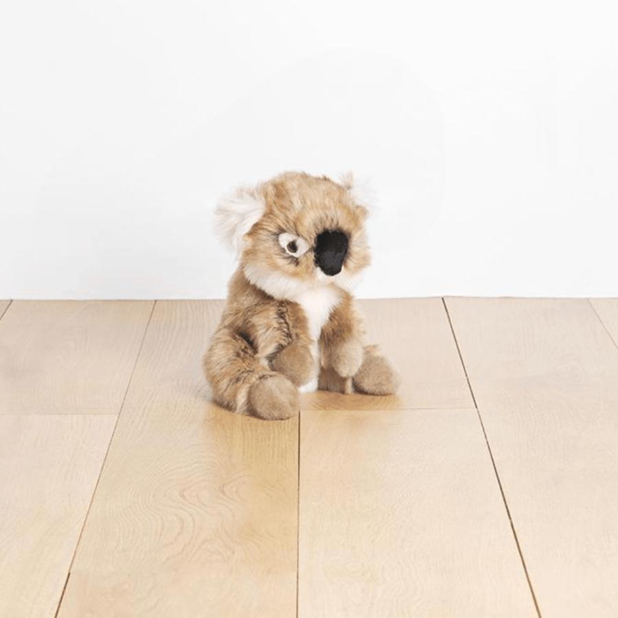 Koala Felicien de La Pelucherie - Petit Bloomer